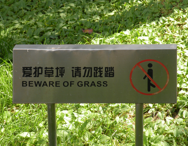 Click to enlarge image Beware of Grass-sm.png